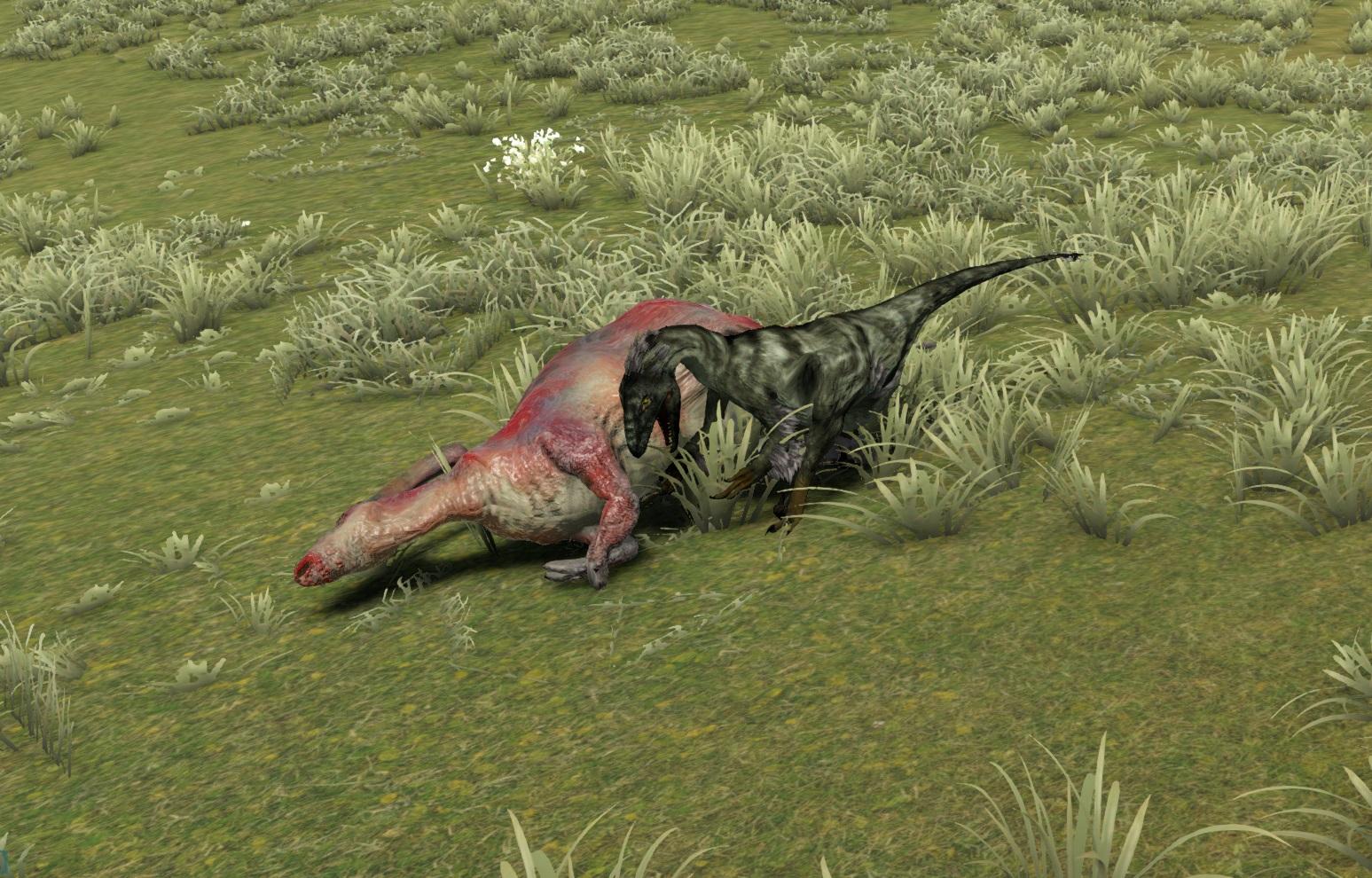 Raptor_Scavange.jpg