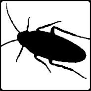 Roachy1